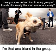 Crazy Friends Meme - have you ever noticed that in every group of friends it s usually