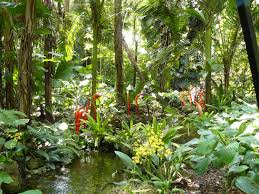 Fairchild Botanical Garden by Botanic Gardens Contain A Third Of All Known Plant Species And