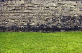 free images grass lawn spring soil stone wall terrain