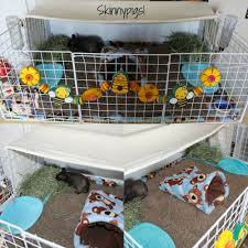 setting up a senior guinea pigs cage c u0026c cage youtube
