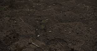 mud ground dirt substance