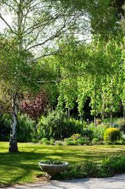 the most poisonous plants in australia hipages com au 108 best riverwalk garden images on pinterest garden ideas