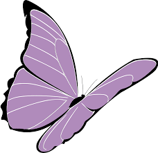 papillon clipart butterfly pencil and in color papillon