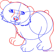 draw a cartoon polar bear step by step drawing sheets added by