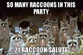 Raccoon Excellent Meme - so many raccoons in this party 21 raccoon salute make a meme