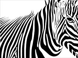 zebra background 6874559