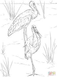 black storks pair coloring page free printable coloring pages