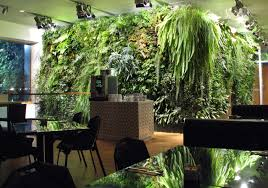 indoor green wall with awesome some long leaved plants design in