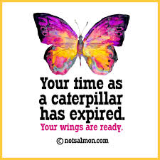 your time as a caterpillar has expired your wings are ready