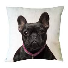 40x40 Cushion Insert Compare Prices On 40x40 Cushions Online Shopping Buy Low Price
