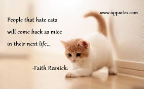 Awesome Quotes About Cats Being - quotes about cats custom cat quotes cat quote cat quotations funny