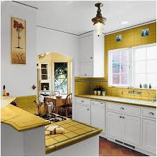 Kitchen Renovations Ideas Small Kitchen Designs Pictures Charming Light Home Improvements