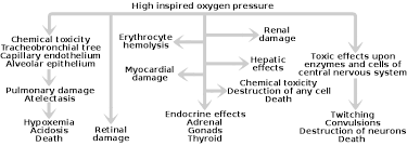 Signs And Symptoms Of Blindness Oxygen Toxicity Wikipedia