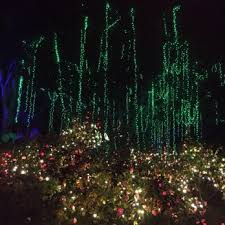 christmas lights los angeles la zoo lights 1692 photos 412 reviews zoos 5333 zoo dr