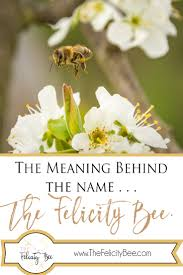 Behind Meaning The Felicity Bee The Meaning Behind The Name U2014 The Felicity Bee