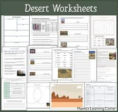 desert worksheet packet for 1st 3rd graders desert animals