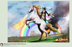 Unicorn Rainbow Meme - history of the microsoft ninja cat on a unicorn and how to get