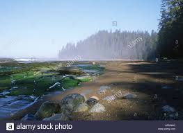 Park West Landscape by Pacific Rim National Park West Coast Trail Beach At Darling