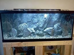 Aquarium Decoration Ideas Freshwater Aquascape Idea Lake Malawi Mbuna Pinterest Aquariums