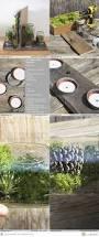 79 best biosphere terrarium images on pinterest plants