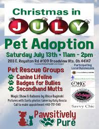 christmas in july u2013 pet adoption event