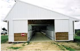 Calf Raising Barns Replacements And Milking