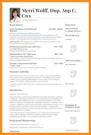 Nurse Practitioner Resume Samples Nursing Resume Sle 28 Images Occupational Health