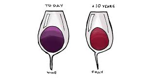 wine facts kinds of wine 12 fascinating facts about wine wine folly
