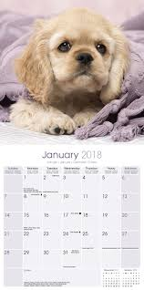 where can i buy a calendar cocker spaniel puppies calendar 2018 10203 18 dog breeds