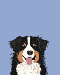 australian shepherd gifts australian shepherd dog art print signed by artist by k9artgallery