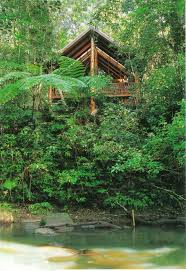 Under Canopy Rainforest by 58 Best Tropical Treehouse Living Images On Pinterest Treehouses