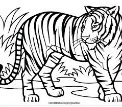 coloring page tiger paw detroit tigers paws coloring pages tomintohyo info