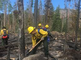 Wildfire Colorado News by Governor Carney Honors Delaware Forest Service Wildfire Crew At