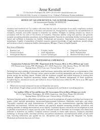 Individual Resume Free Irs Federal Resume Example