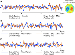 cocktail party effect visual input enhances selective speech envelope tracking in