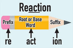 are base words and root words the same