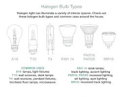 common light bulb types recessed light bulb sizes types of lighting fixture fluorescent bulb