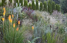 california native plant landscape design examples pacific horticulture society designing for today u0027s garden