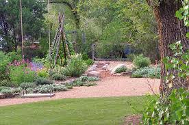 alternatives to grass in backyard permadesign portfolio perma360