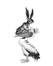 40 best pelican tattoo drawing images on pinterest tattoo ideas