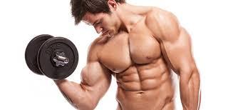 menambah berat badan sekaligus massa otot bagi si kurus