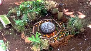 Permaculture  Permaculture Design PDC  Alpestre  YouTube - Backyard permaculture design