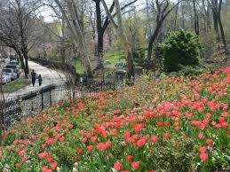 the best new york parks for bbqs and picnics