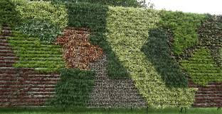 vertical gardens ask wet forget build a vertical garden and turn a small space into