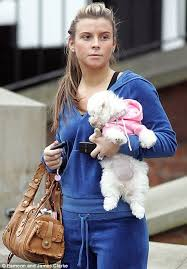 bichon frise long hair wayne and coleen rooney spend 10 000 on underfloor heating for