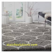 11 X 14 Area Rugs Stoichsolutions Just Another Site Ombre