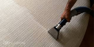 carpet upholstery cleaning services in sky cleaning