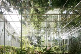 Greenhouse Design Junya Ishigami Japanese Pavilion Google Search Qrgh Connection