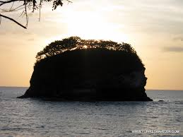 monkeys and halloween crabs of playa real costa rica yuppie