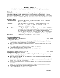 Ceo Resume Examples by Dot Net Resume Virtren Com
